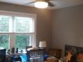 ceilingfan