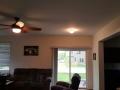 ceiling fan and custom light