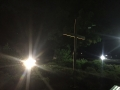uplighting - landscape lighting