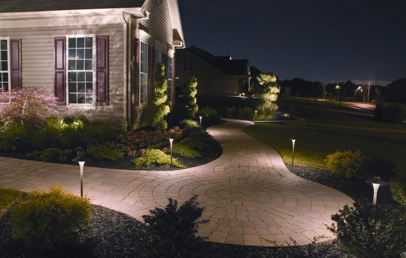 landscape lighting pathway lighting