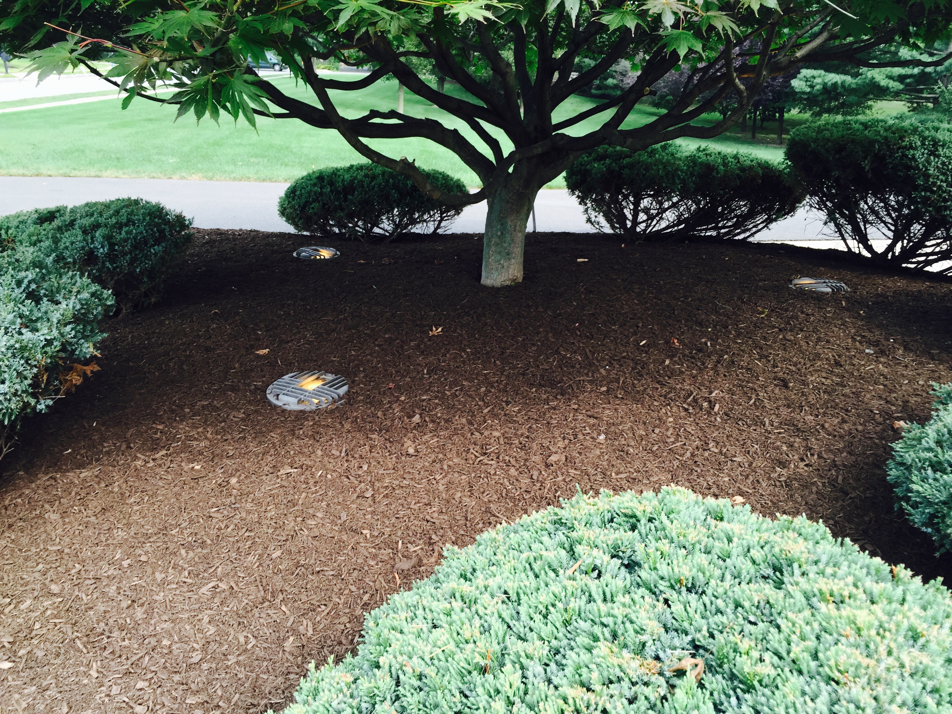 Low Voltage Landscape Lighting For Trees : Low voltage landscape lighting options and benefits